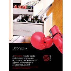 StrongBox fiókrendszerek
